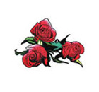 Temporary Tattoo Medium Roses